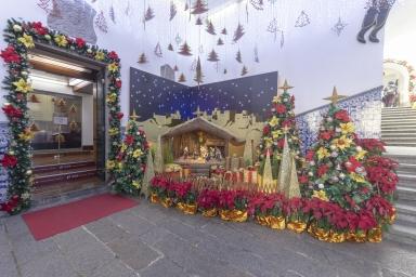 民署大樓內的聖誕裝飾