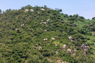 大潭山近機場方何的自然環境