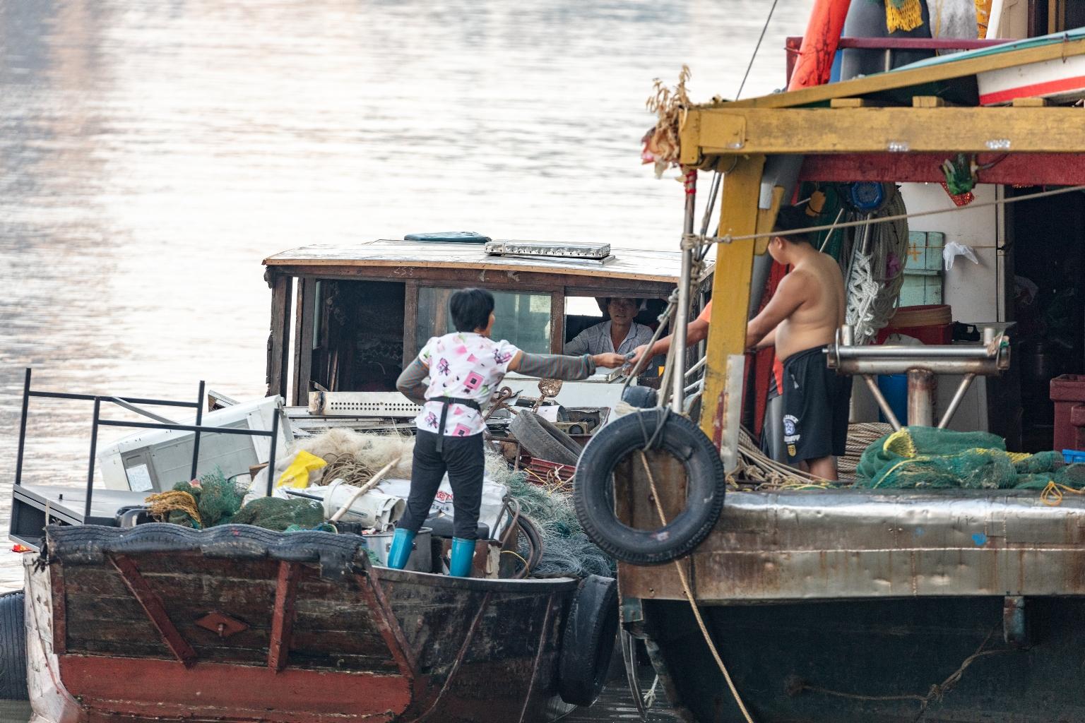內港一帶水面廢品收購船